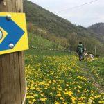 Bergamo in cammino su Rai Tre: a Geo si presenta l'Alta via delle Grazie
